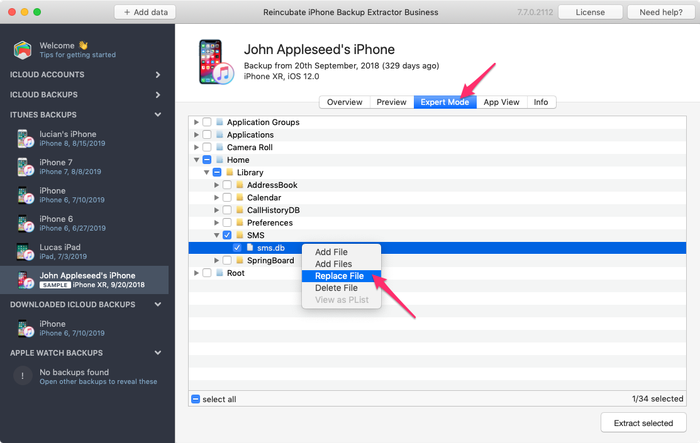 Replacing files in an iPhone backup